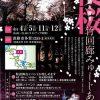 yozakura201504-thumb-425x600-695
